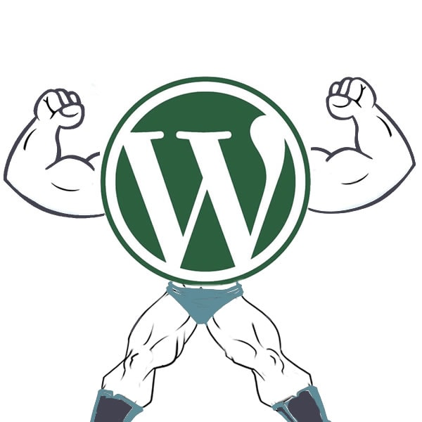 WordPress Dominance